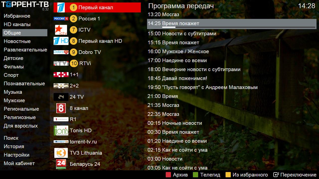Торрент телевидение программа скачать
